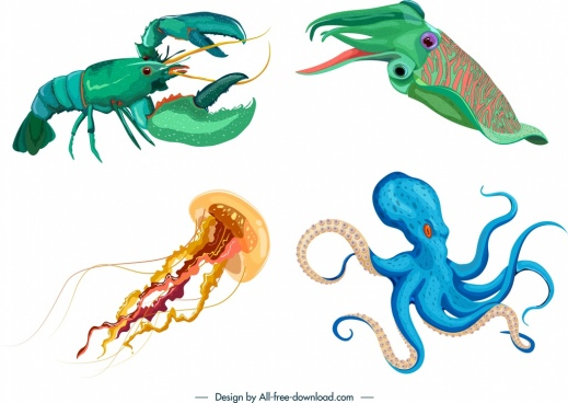 sea animals icons lobster squid jellyfish octopus sketch