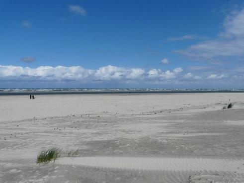 sea beach wide