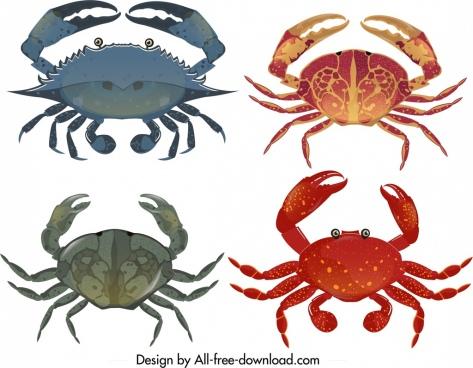 sea crab icon templates colorful modern design