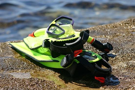 sea dive summer