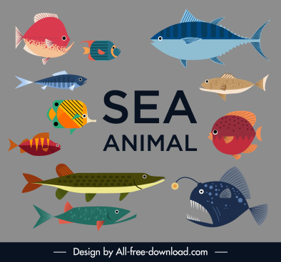 sea fish species icons colorful flat sketch