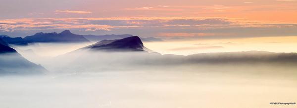 sea mist explored