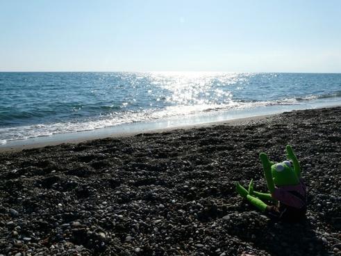 sea sand beach wave