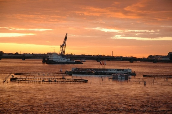 sea sunset boat