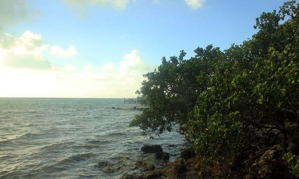 sea view at tavernier key florida