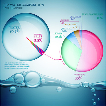 sea water composition infographic vector