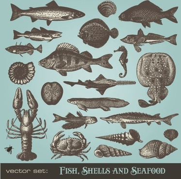 seafood animals vector