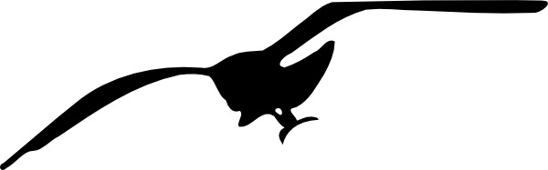 Seagull Contour clip art