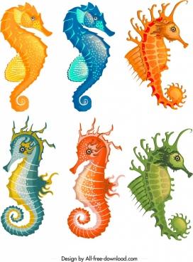 seahorse icons collection colorful cartoon sketch