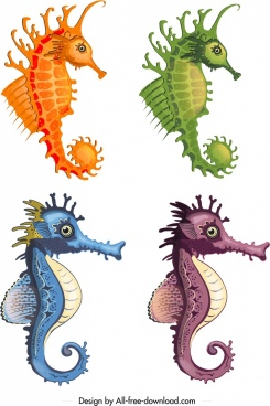 seahorse icons templates mockup design colorful modern sketch