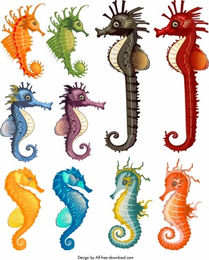 seahorse species icons collection multicolored cartoon design