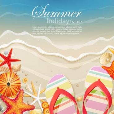 seashells starfish beach vector