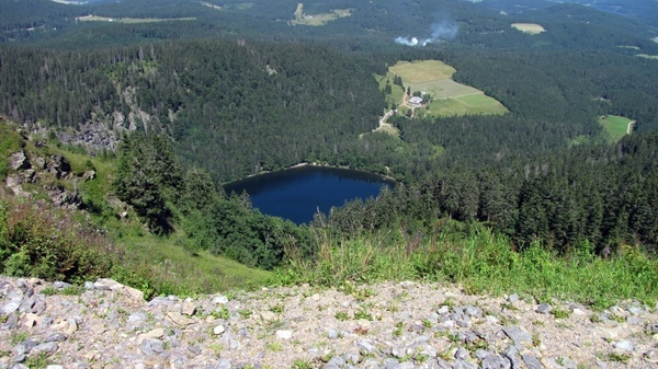 see box lake black forest