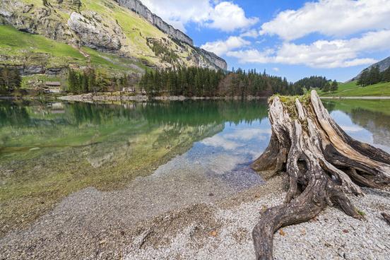 seealpsee landscape ii