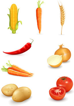 set of different vegetable mix vector