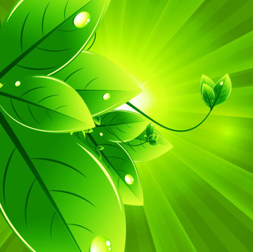 set of eco friendly with green leaves background vector