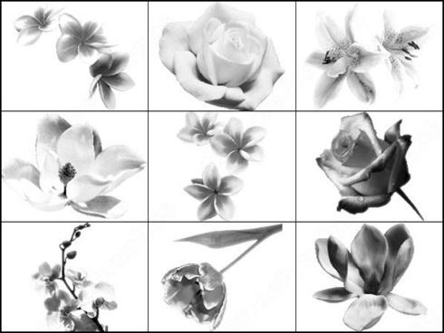 set of flower brush