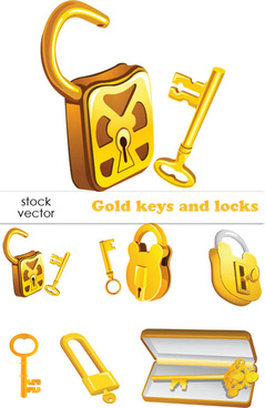 set of gold color keys8 locks vector