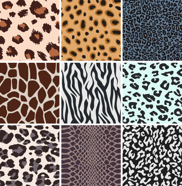 set of leopard pattern vector