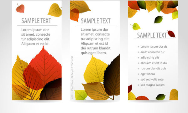set of maple leaves cards vector