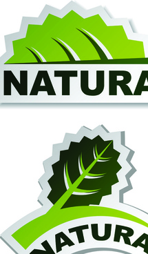 set of natural elements stickers vector graphic
