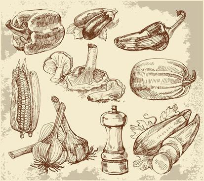 set of sketch kitchen supplies vector