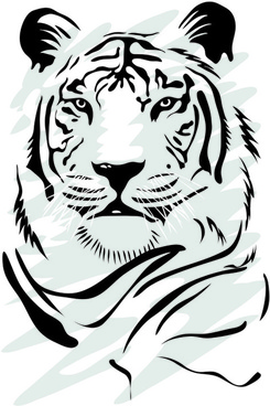 set of tiger elements vector