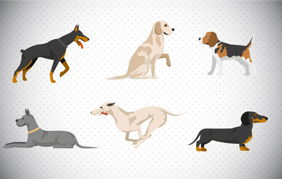 set of various dogs vector illustration