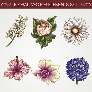 set of vintage flowers vector