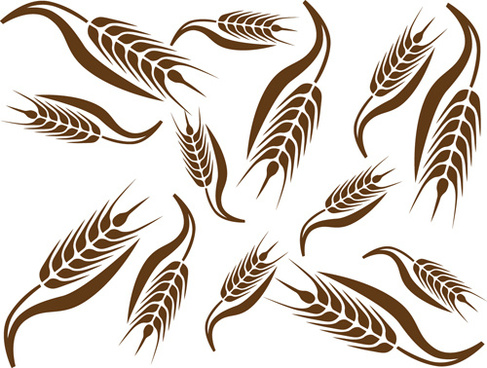 set of wheat patterns mix vector