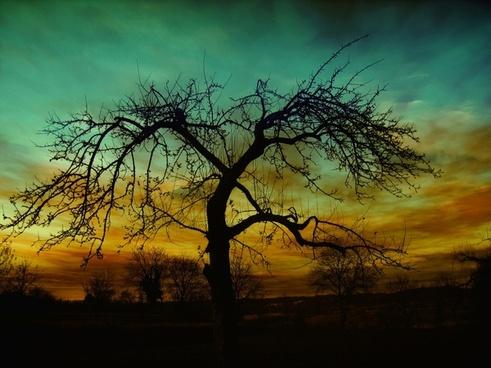 setting sunset atmosphere