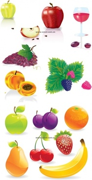several common fruits vector