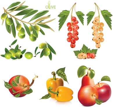several fruits vector