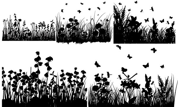 several grass and butterflies silhouette vector