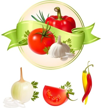 several vegetables vector