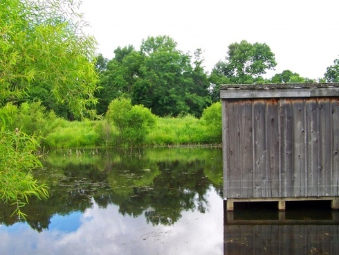 shack on pond