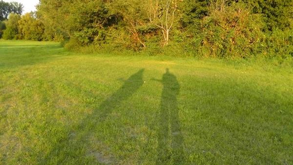 shadow musicians summer musician