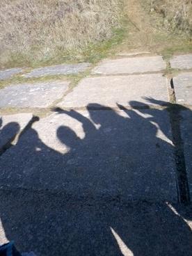 shadows of fun