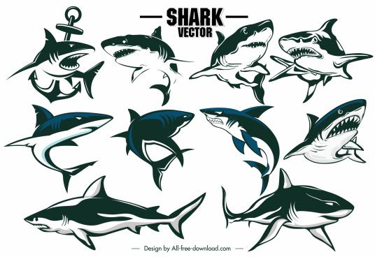 shark icons dynamic handdrawn outline