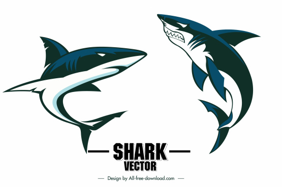 shark icons dynamic swimming sketch