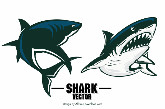 shark icons frightening sketch dynamic design