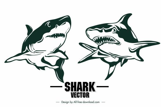 shark icons handdrawn sketch classic design
