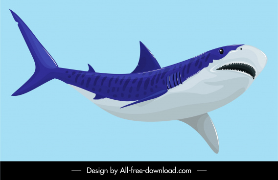shark painting colored classical sketch
