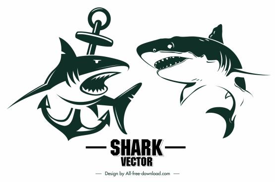 shark tattoo icons dynamic sketch