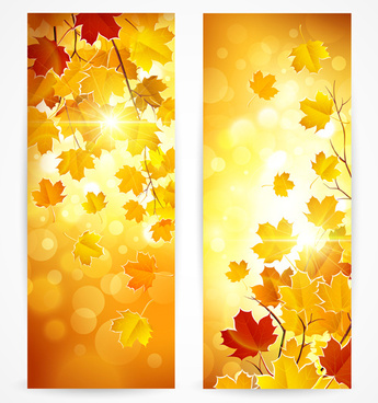 shiny banner autumn leaves vector