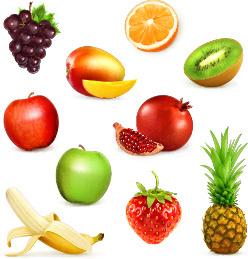 shiny fresh fruits vector set