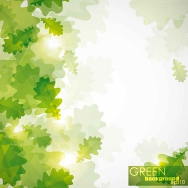 shiny green leaf backgrounds vector