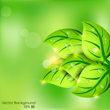 shiny green leaves background design vector