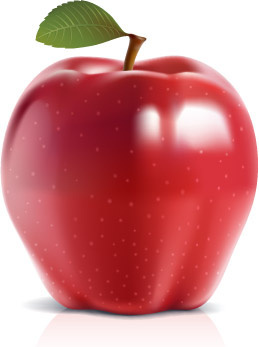 shiny red apple vector