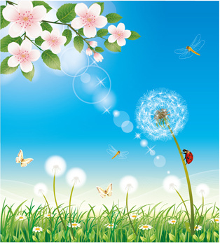 shiny summer flowers vector